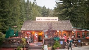 alice's restaurant south bay